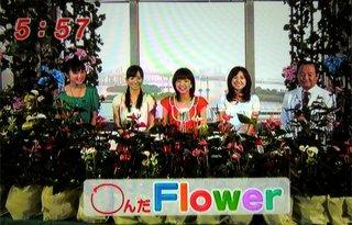 mezamashi_03.jpg