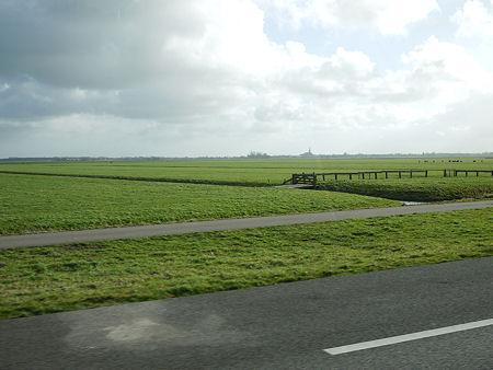 holland_1.jpg